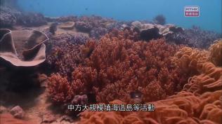 [1280x720] rthk.hk 香港電台網站 左右紅藍綠南海仲裁案對解決爭端的意義.mp40307